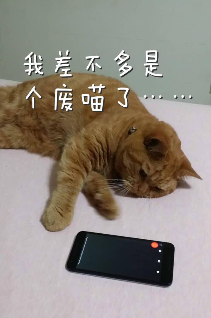 8.pic_meitu_10.jpg